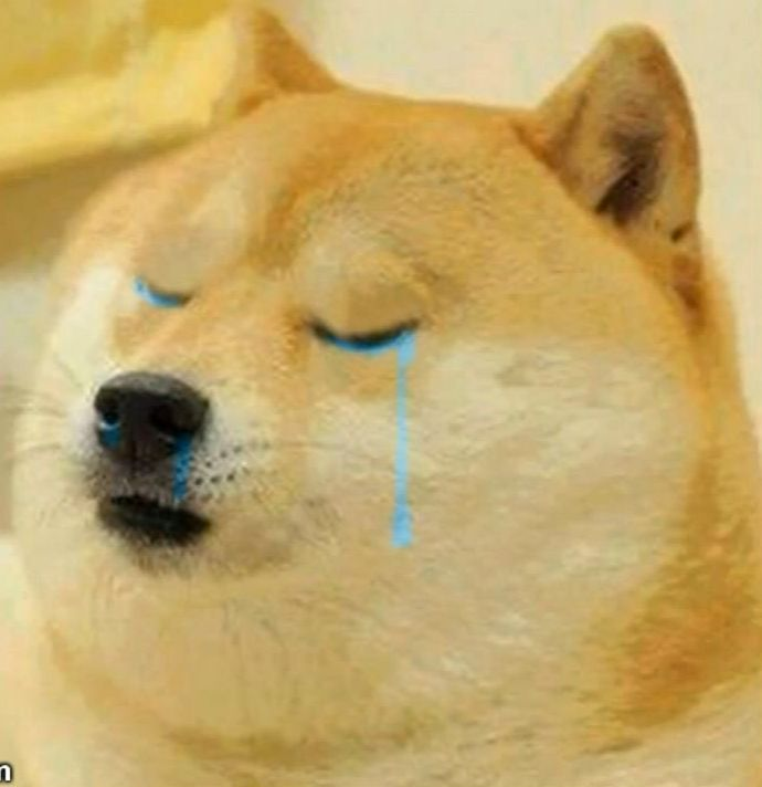 Doge Crying meme template