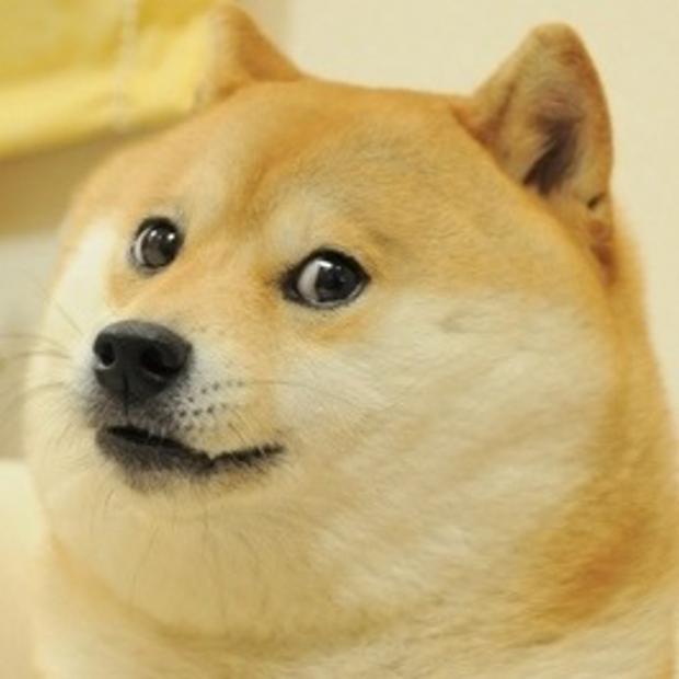 Doge meme template