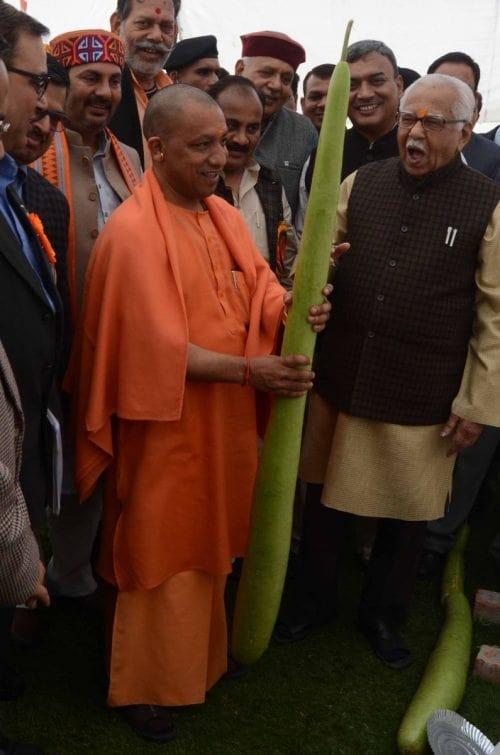 Yogi Adiyanath measuring his height against a giant bottle gourd (Lauki) funny photo meme