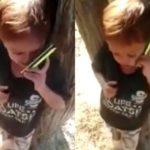 Ab bol ab bol na madarc**d small indian boy abusing on phone viral video meme template