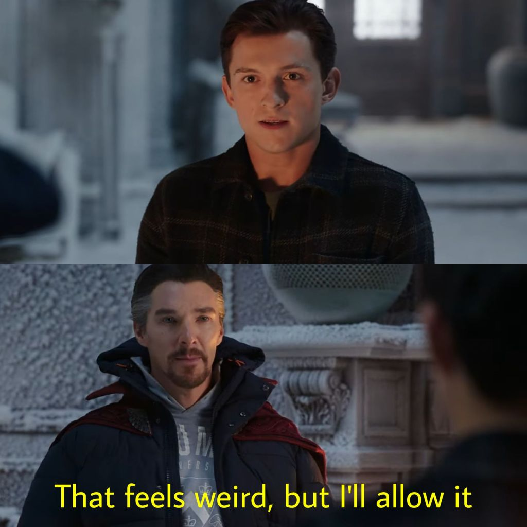 that feels weird But I will allow it doctor strange in spider man no way home meme template
